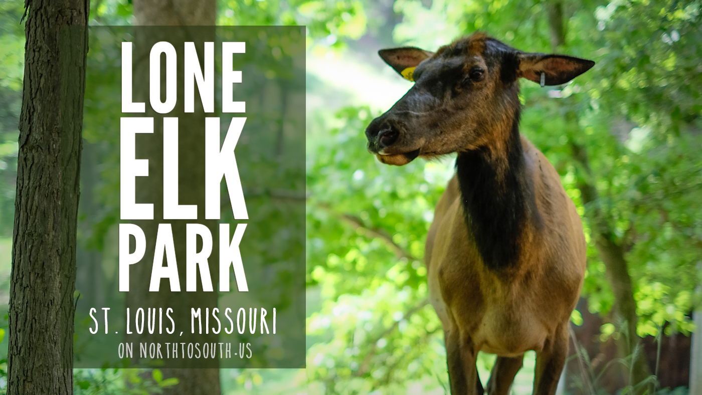 Lone Elk Park in St. Louis Missouri on northtosouth.us