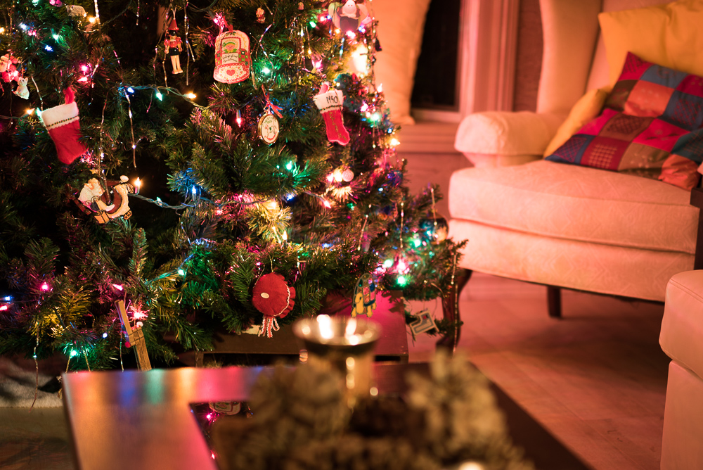 Shot of the week: O Christmas Tree on northtosouth.us
