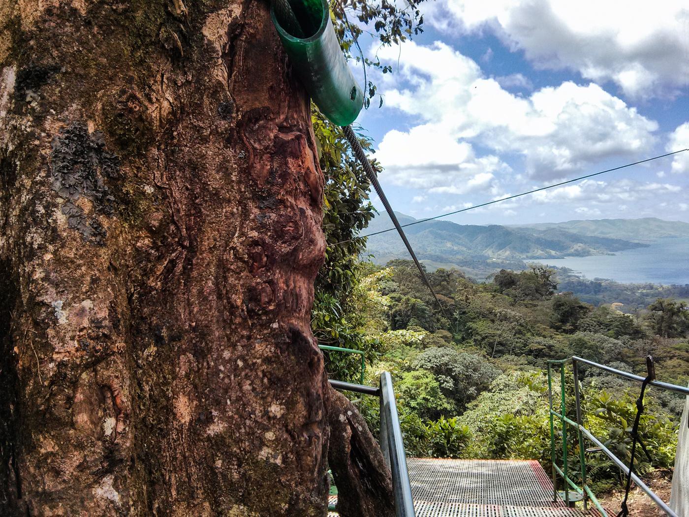 ziplining view on Sky Trek with Sky Adventures Arenal, Costa Rica