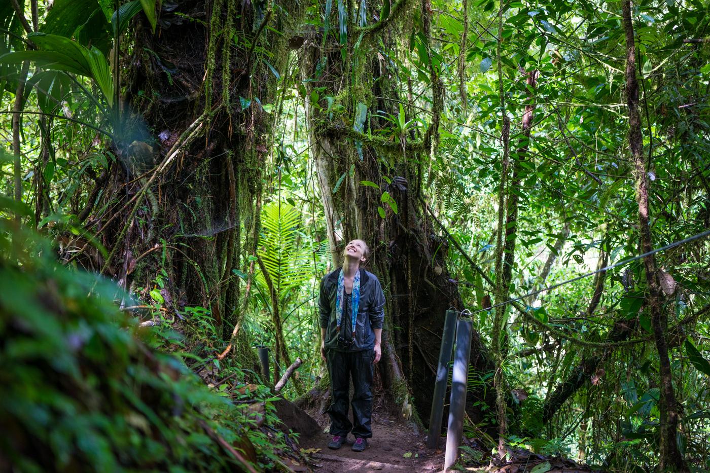Sky Walk hike with Sky Adventures Arenal, Costa Rica