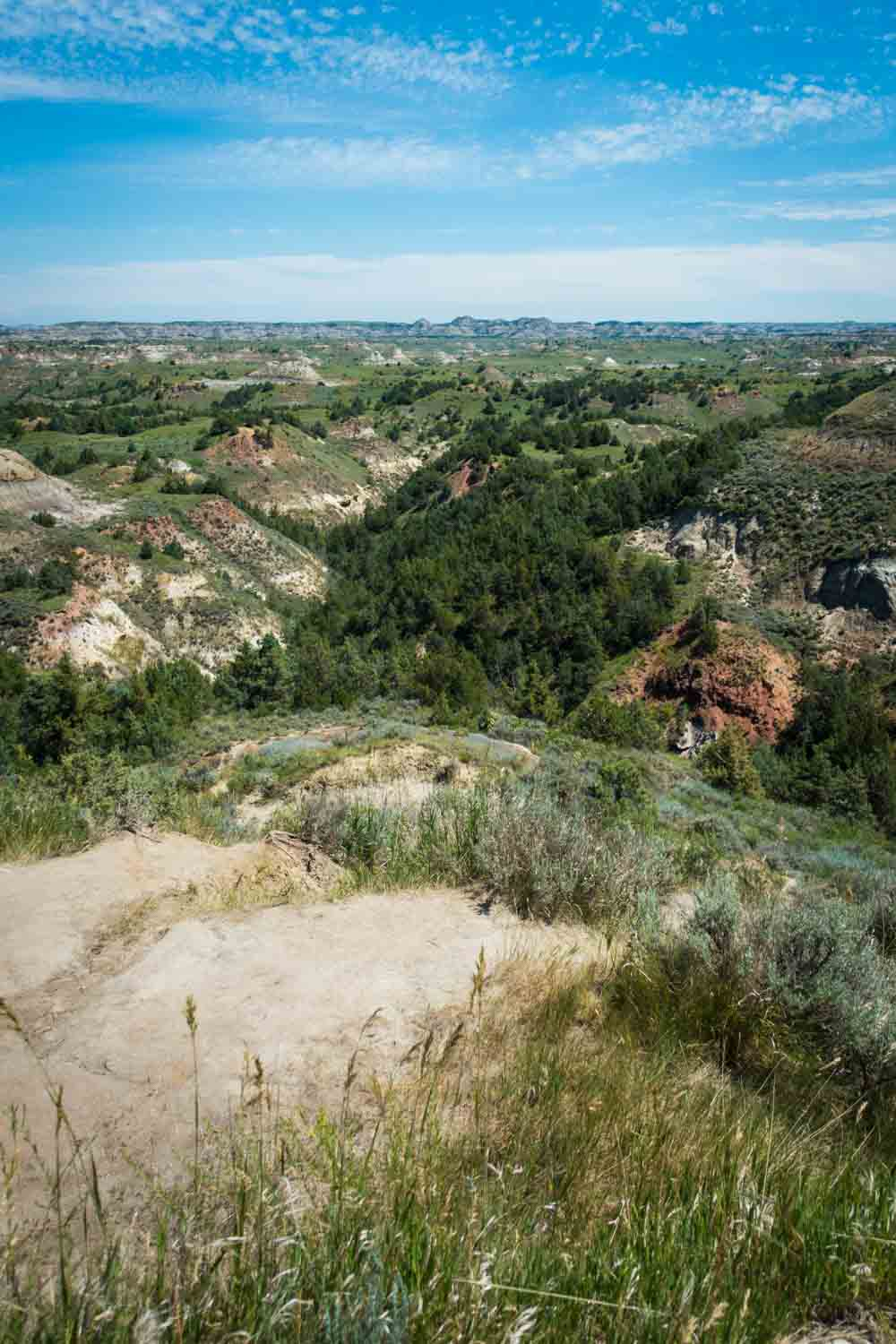 Theodore Roosevelt National Park summer scenery