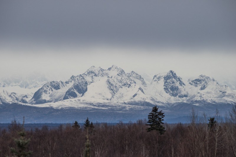 Things to Do in Alaska: Take in the Mountain Views from Talkeetna
