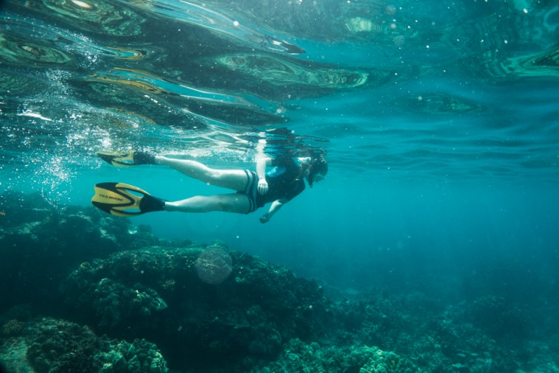 Snorkeling at Two Steps in Honaunau Bay, Big Island Hawaii
