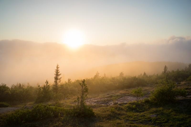 beautiful sunset light at Acadia National Park