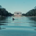 North to South U.S. road trip recap week eighteen | Lincoln Memorial Reflecting Pool duck