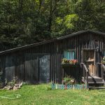 west-virginia-seneca-house-airbnb-us-road-trip-5