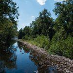 U.S. Road Trip Re-Cap: Week Nineteen -- Hiking at Seneca Rocks, West Virginia